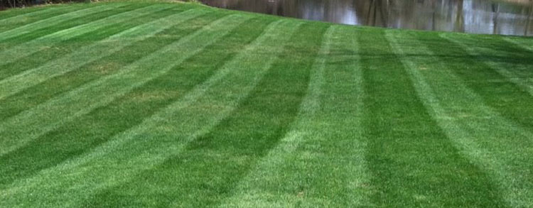 Andover-MA-Lawn-Care