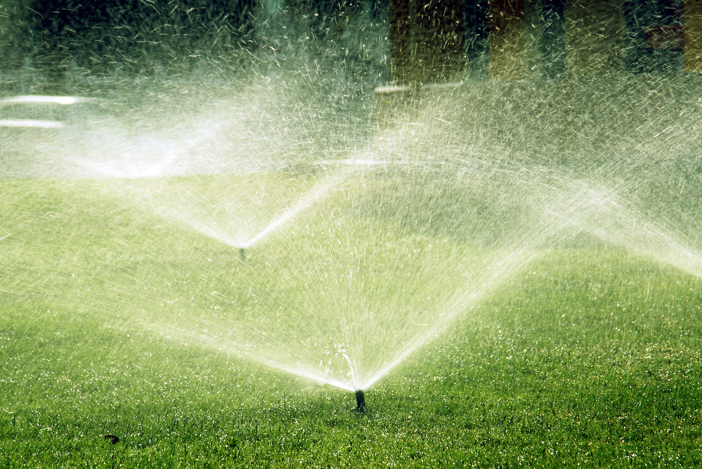 save money with a smart water saving sprinkler system