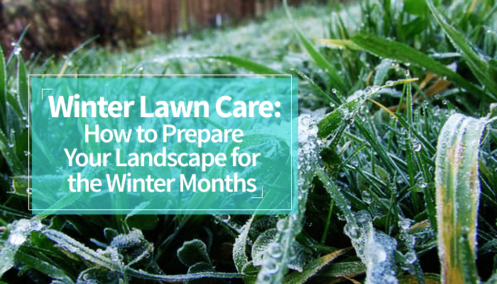 Winter Lawn Care How to Prepare Your Landscape for the Winter Months