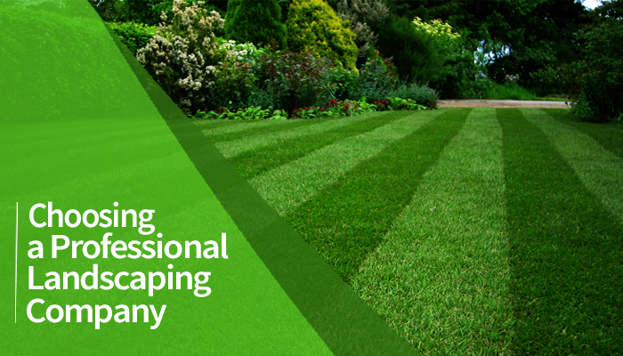 Choosing A Professional Landscaping Company T Amp B Landscaping