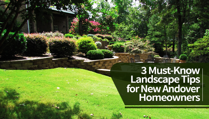 Best Landscapers in Andover