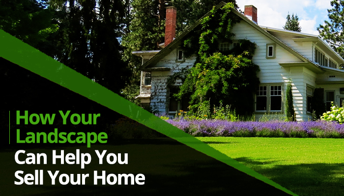 How your landscape can help you sell your home t b for Landscaping help