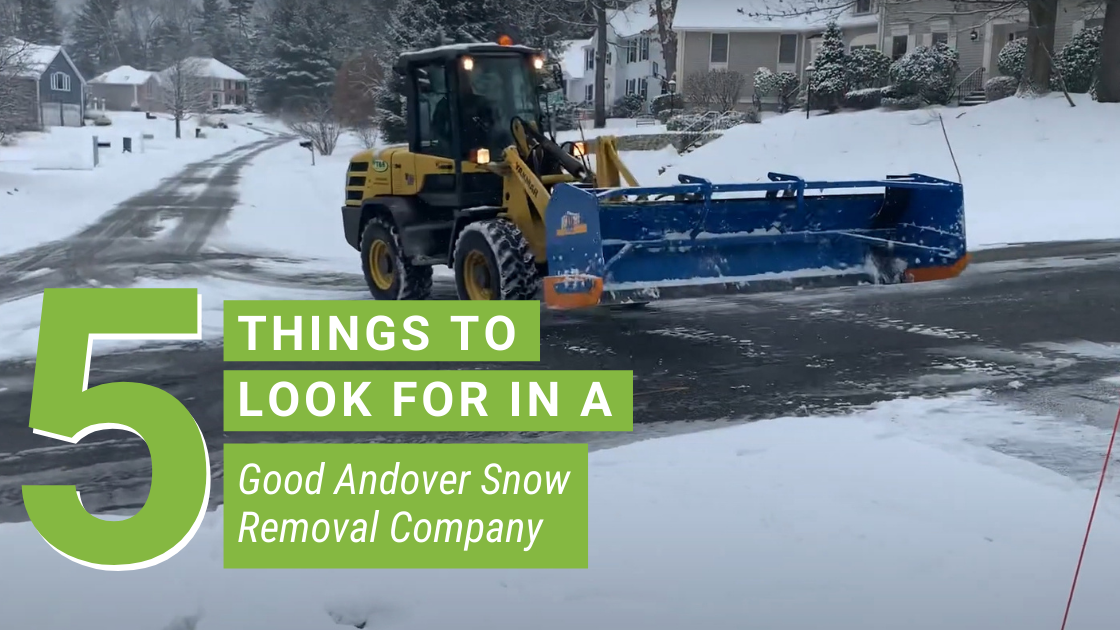 5 Things to Look for in a Good Andover Snow Removal Company
