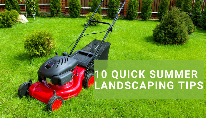 Summer Landscaping Tips